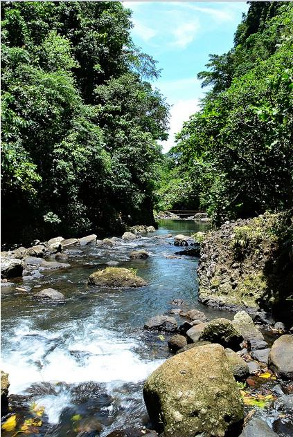 Get Ready To Experience The Adventures In Panguil River