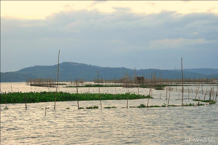 Laguna de Bay: A Multi-purpose Bay