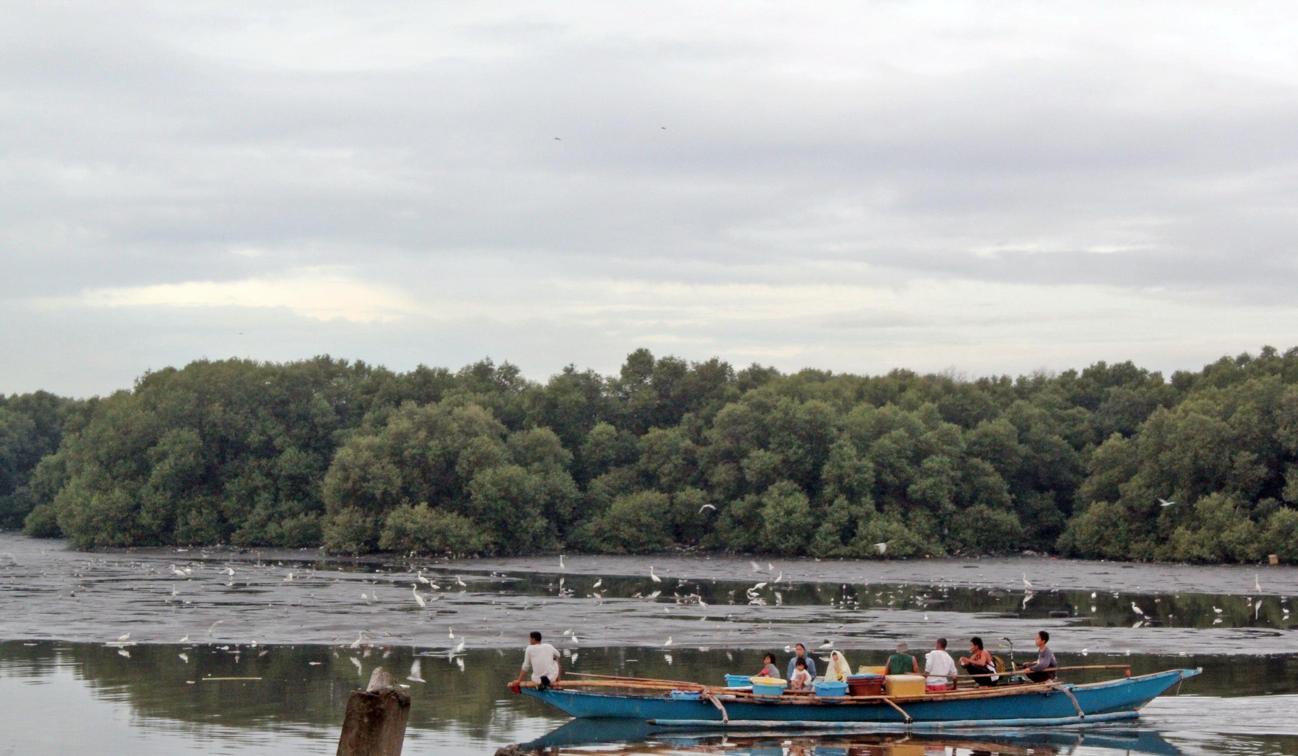 Las Piñas-Parañaque Critical Habitat and Eco-tourism Area