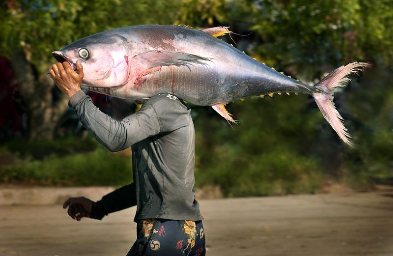 General Santos City: The Tuna Capital of the Philippines