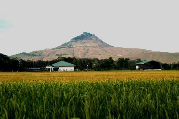 SUROY PILIPINAS - A Philippine Travel Blog: Bukidnon: Saturday ...