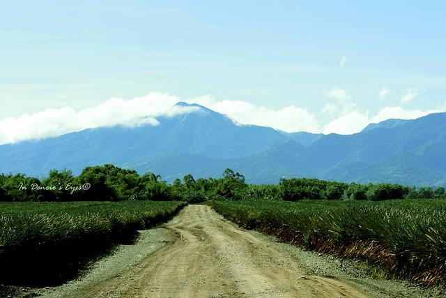 The Farms, Plantations and Agro-Tourism Sites of Bukidnon