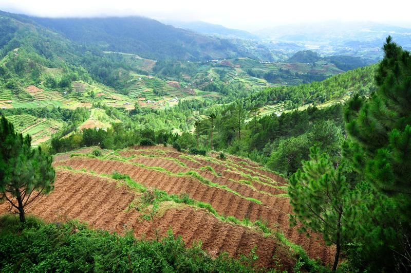 the agri tourism in batangas province The province of batangas is a favorable place for any business with a very low crime rate and stable labor condition the strategically located military detachments, police stations and outpost make the province as one of the most advantageous spot to do business in the philippines.