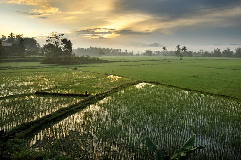 Dumingag zamboanga del sur