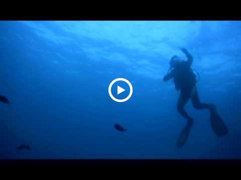 It's More Fun in the Philippines| Diving Surprises in the Philippines | Department of Tourism