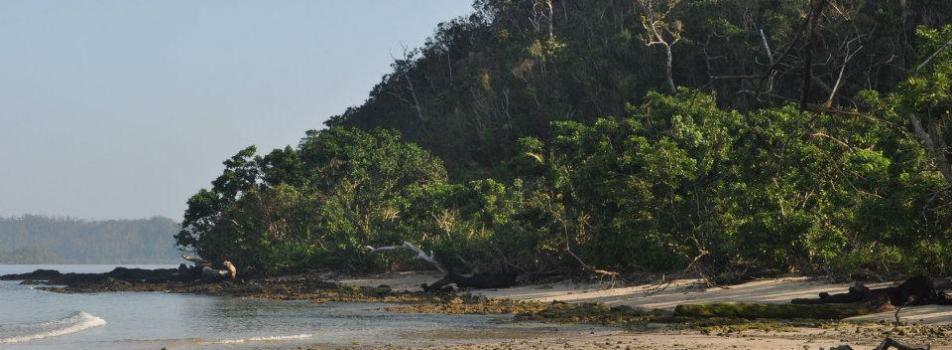 Bicobian Beach
