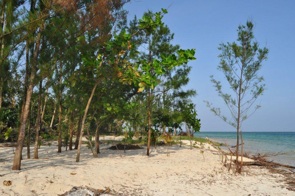 Honeymoon Island: The Perfect Place for Couples